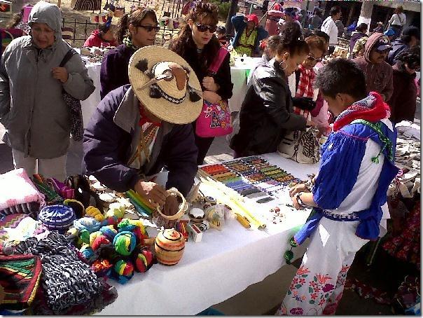 2012-12-16-feria-intercultural-indigena (12)