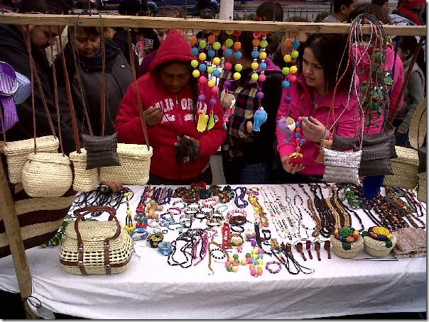 2012-12-16-feria-intercultural-indigena (34)