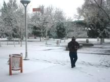 2013-01-04-nevada (4)