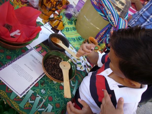 2013-09-30-xx-muestra-gastronomica-chapulines (6)