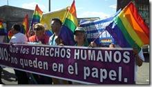 2014-06-23-10a-marcha-diversidades (5)