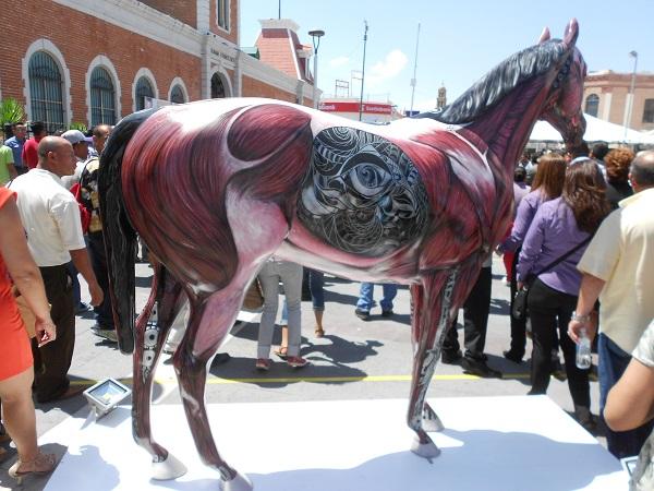 2015-08-25-caballos-jrz-y-amo-jrz (19)