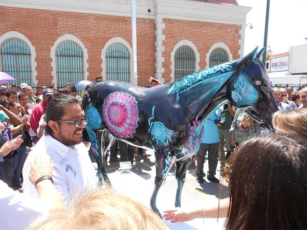 2015-08-25-caballos-jrz-y-amo-jrz (24)