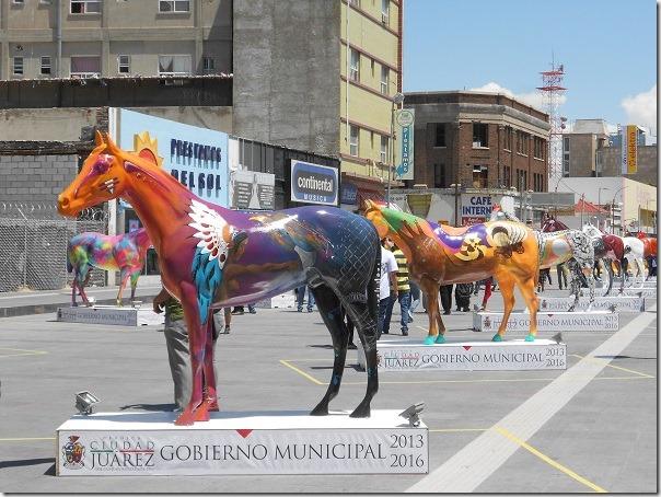 2015-08-25-caballos-jrz-y-amo-jrz (31)