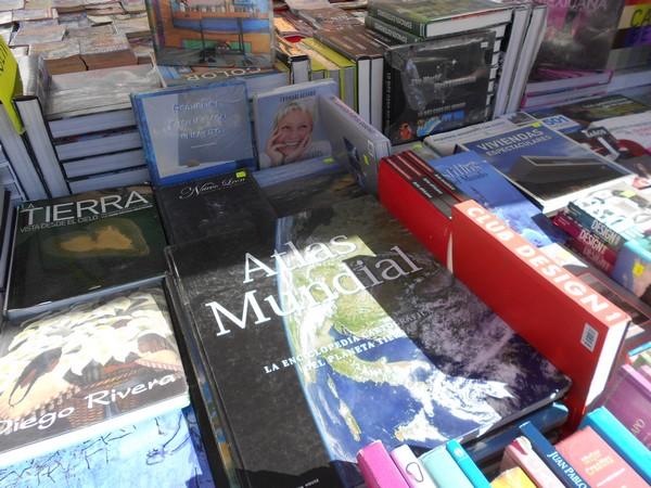205-09-27-feria-libros-centro (12)