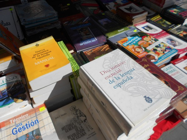 205-09-27-feria-libros-centro (13)