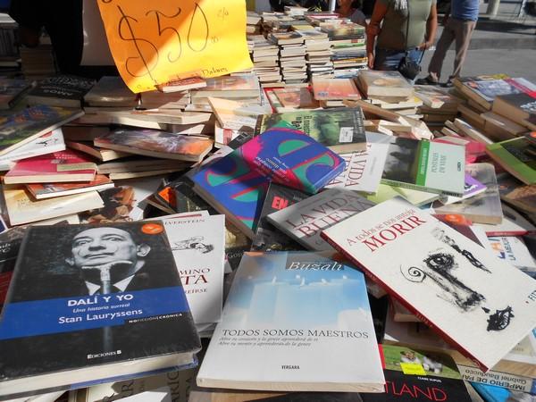 205-09-27-feria-libros-centro (3)