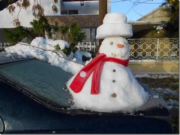 2015-12-28-monos-nieve (1)
