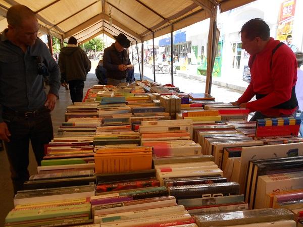 2016-04-03-tianguis-libros (9)