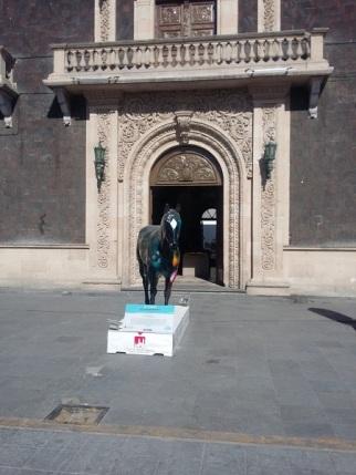 2016-05-04-cma-caballos (5)