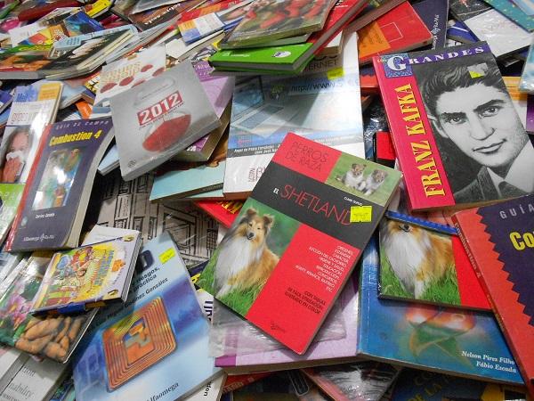 2016-05-29-tianguis-libros (7)