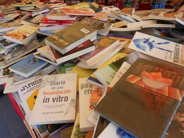 2016-07-17-tianguis-libros (10)