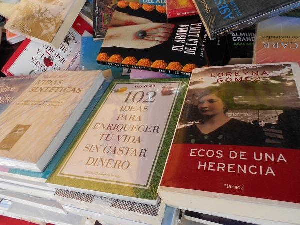 2016-07-17-tianguis-libros (12)