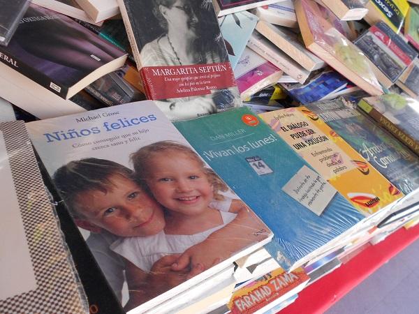 2016-07-17-tianguis-libros (13)