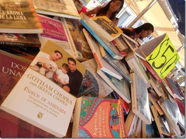 2016-07-17-tianguis-libros (1)