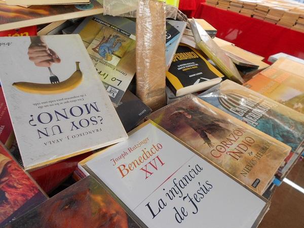 2016-07-17-tianguis-libros (3)