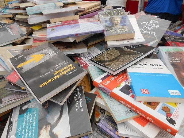 2016-07-17-tianguis-libros (5)