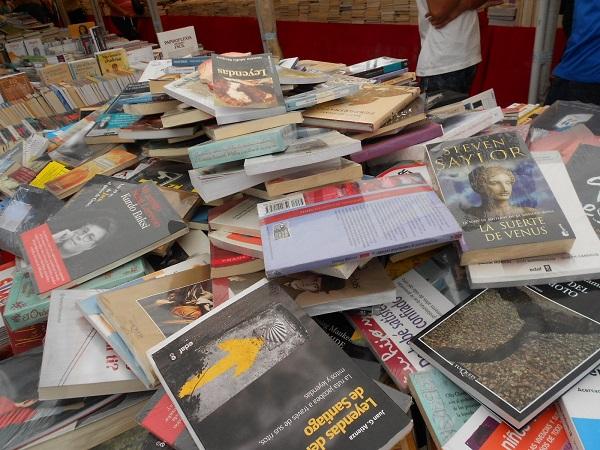2016-07-17-tianguis-libros (6)