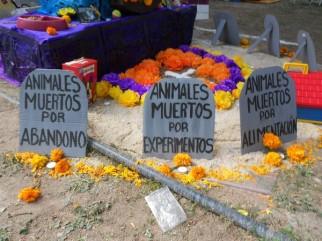 2016-11-02-catrinas-altares-y-tumbas-5