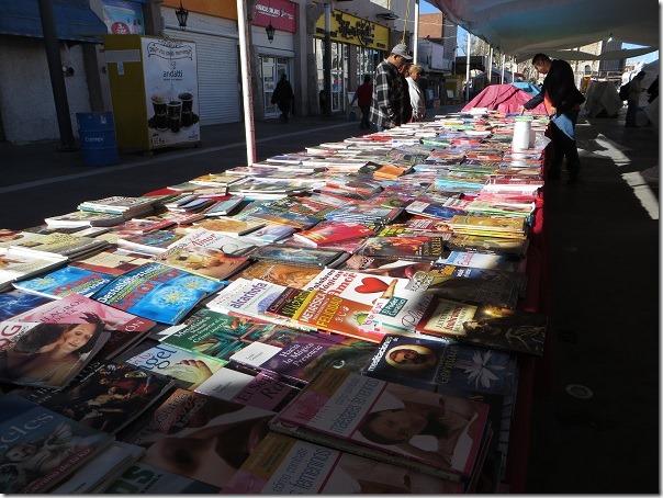 2017-02-19-libros-centro (3)