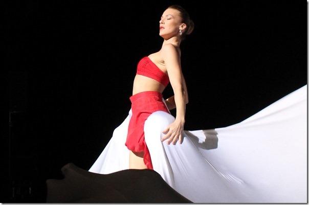 2017-10-11-fich-ballet-hungria (1)