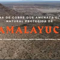 #NoALaMina: AMPARO+FIRMAS