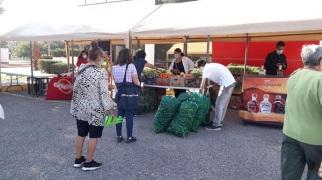 2020-09-26-canacintra-feria-agricultores (3)